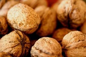 walnuts-574728_640